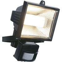 Powermaster  Black Finish Floodlight - 24W